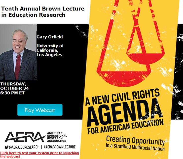 2013 AERA Brown Lecture